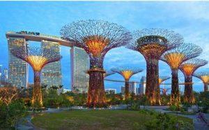 新加坡研究生申请
